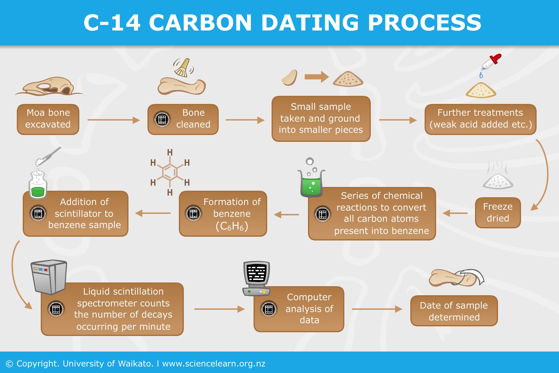 Who first developed the process of carbon dating