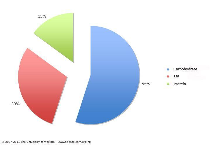 Balanced Diet Pie Chart Ortho Atlas