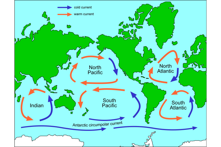 Major Ocean Currents Of The World Map.Map Of Ocean Gyres Science Learning Hub