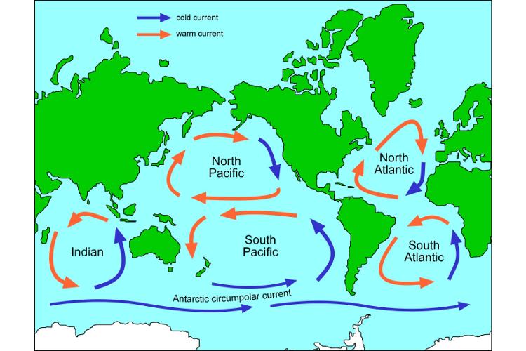 Map of ocean gyres — Science Learning Hub