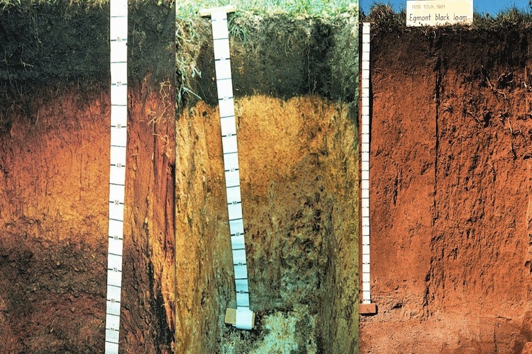 Soils are not all the same science learning hub for Soil mineral content