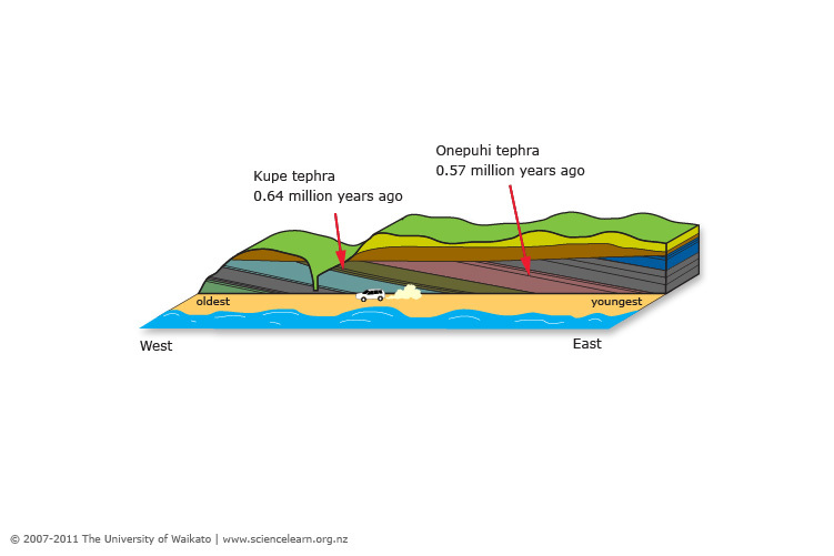 Diagram Of Whanganui Cliffs Science Learning Hub