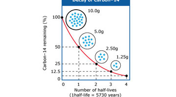 Hoe wordt Half Life gebruikt in Carbon dating