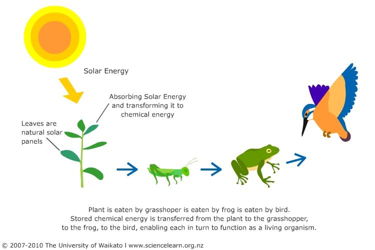 Using Solar Energy Science Learning Hub