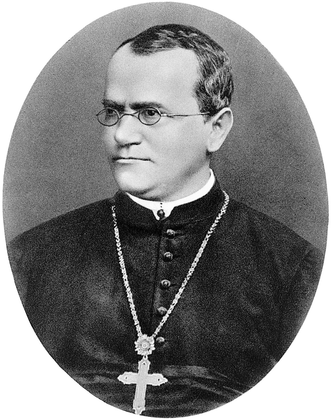 gregor mendels theories of genetic inheritance One major difficulty with darwin's theory of evolution by natural selection was   gregor mendel (1822-1884) was trained as a physicist and brought a  of  segregation) there may be two or more alternative forms of a gene.