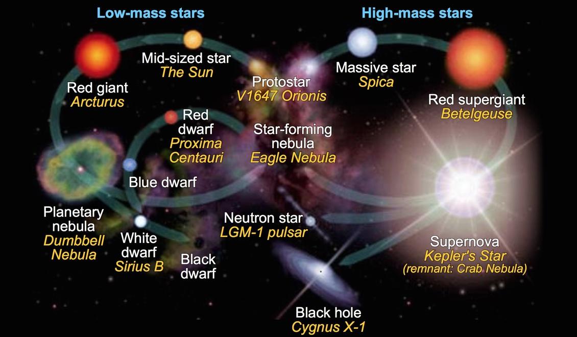 The Stellar Evolution Of Stars  U2014 Science Learning Hub