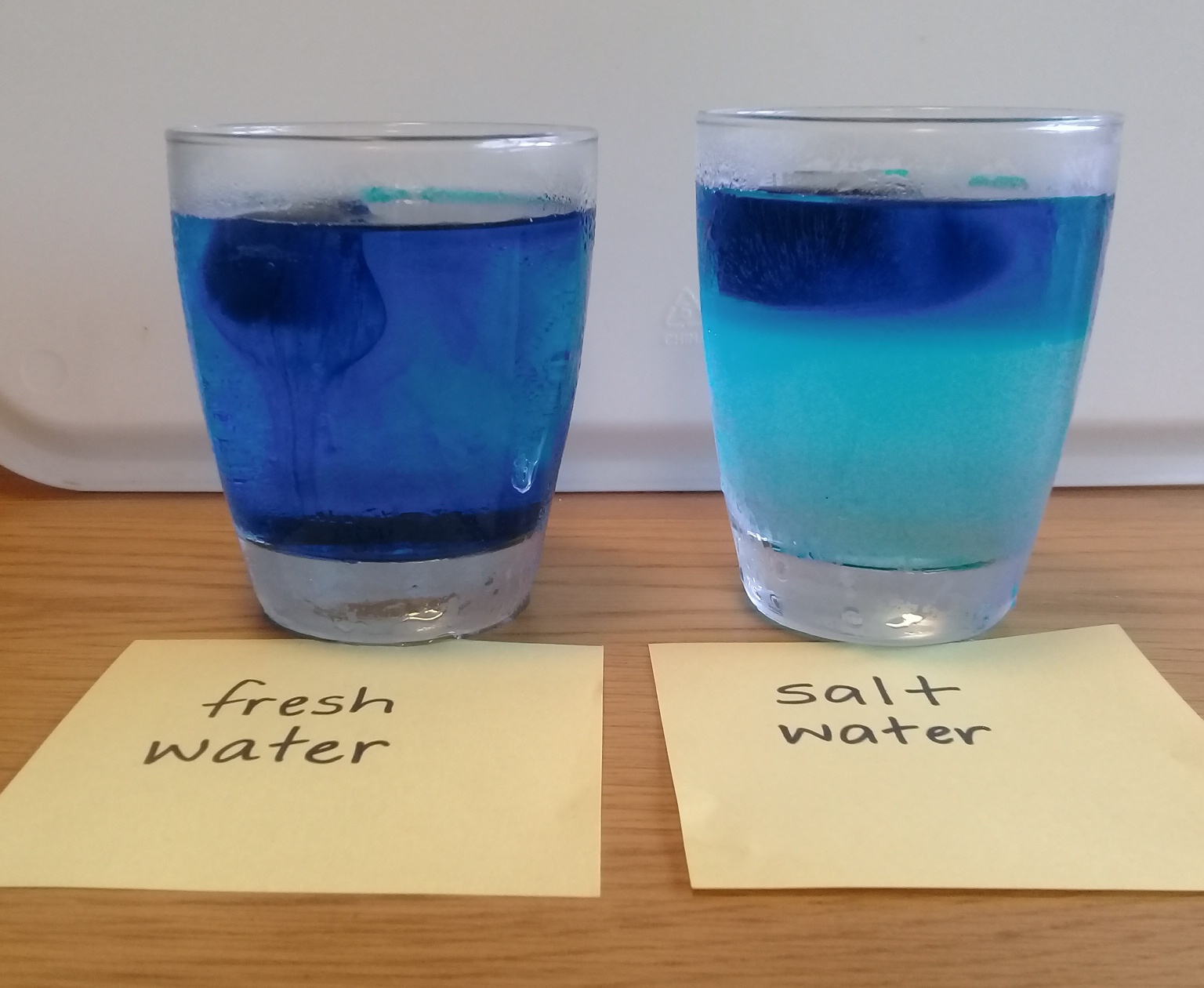 Temperature Salinity And Water Density Science Learning Hub