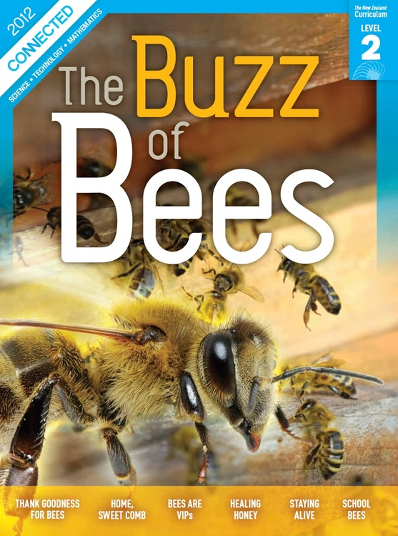The buzz of bees — Science Learning Hub